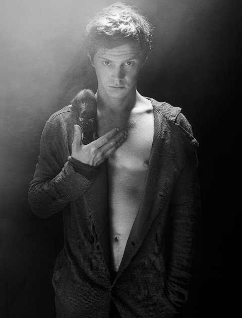 Evan-Peters-flaunt-homotography-1