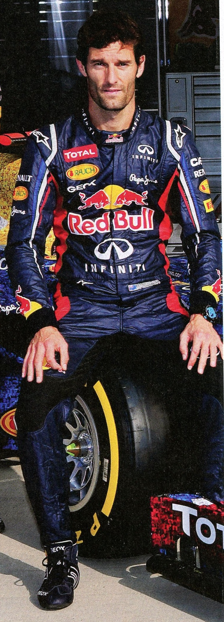 Mark Webber F1