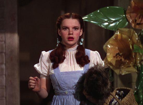 Judy-Garland-dress