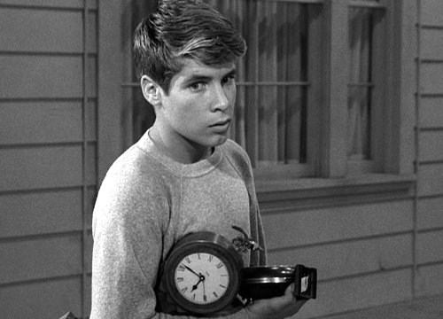 Don-Grady-My-Three-Sons