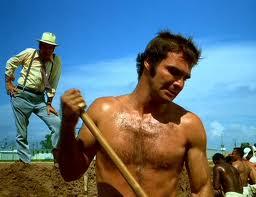 Shirtless-Burt-Reynolds