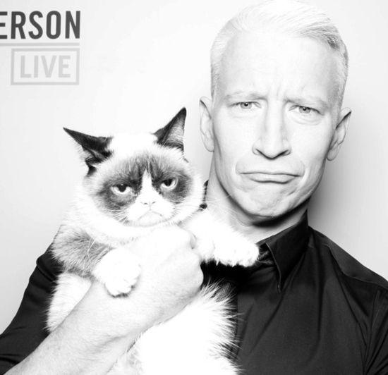 Grumpy-Cat-Anderson-Cooper