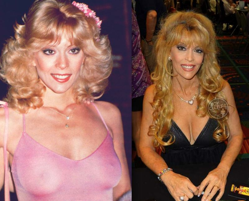 Excellent, support. Audrey landers daughters naked brilliant