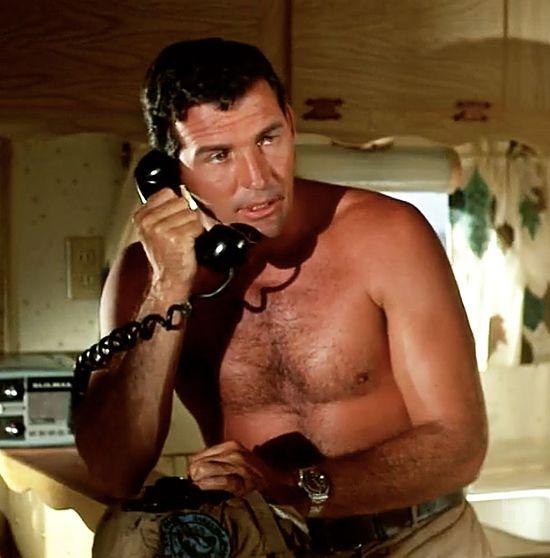 Brian-Kelly-Flipper-shirtless