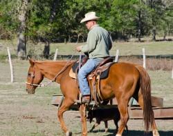 Kylekacal-rancher250
