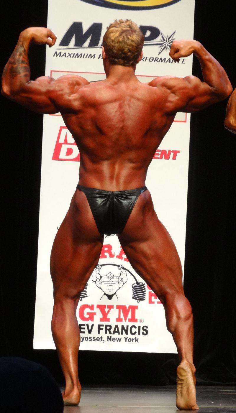 Blond muscle DSC02049