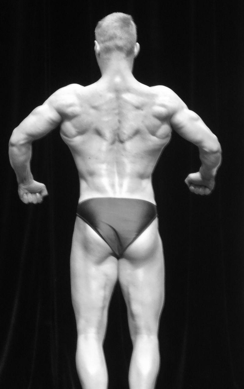 Muscles DSC01854
