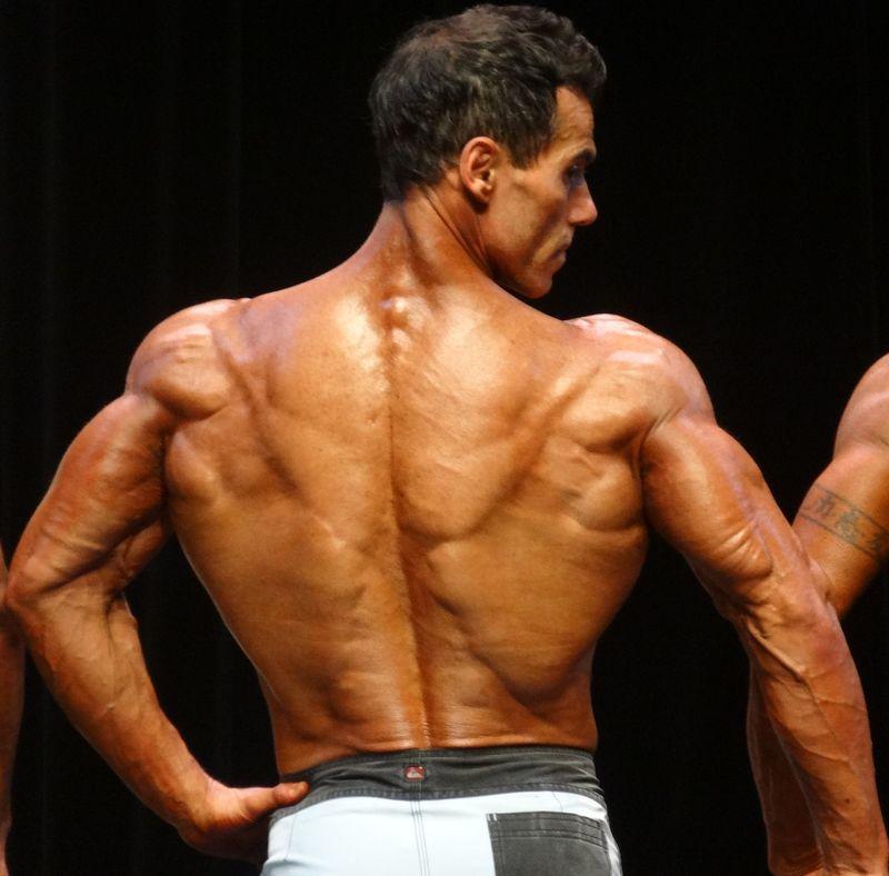 Muscles DSC01150