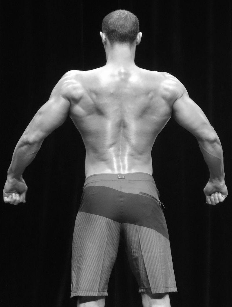 Muscular DSC01723