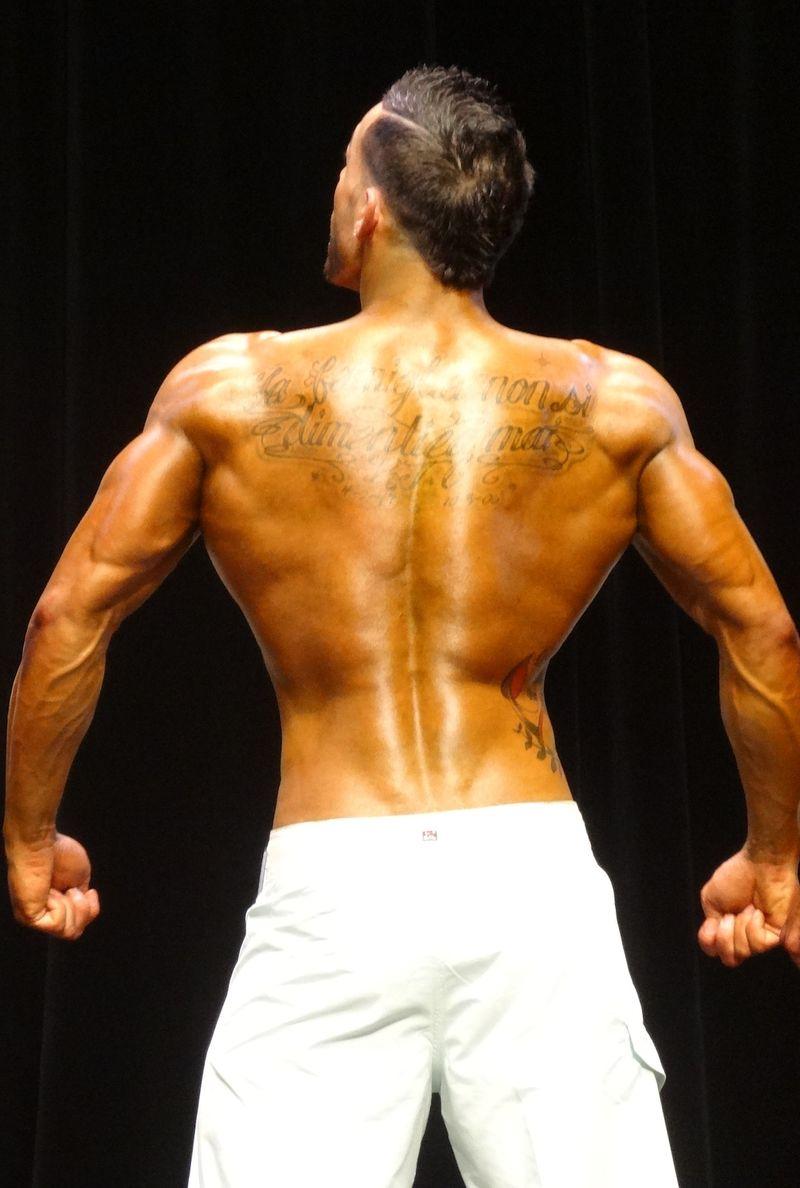 Muscular DSC01660