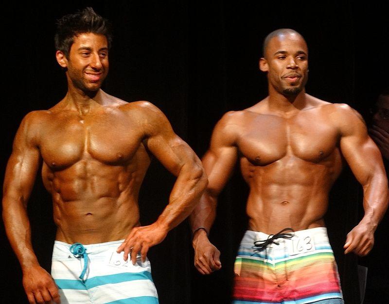 Muscular DSC01223