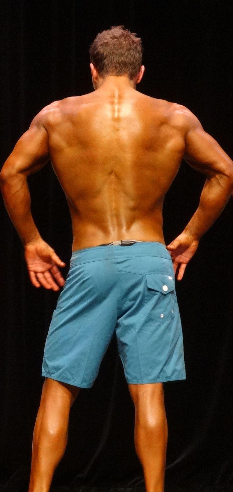 Muscular DSC01308