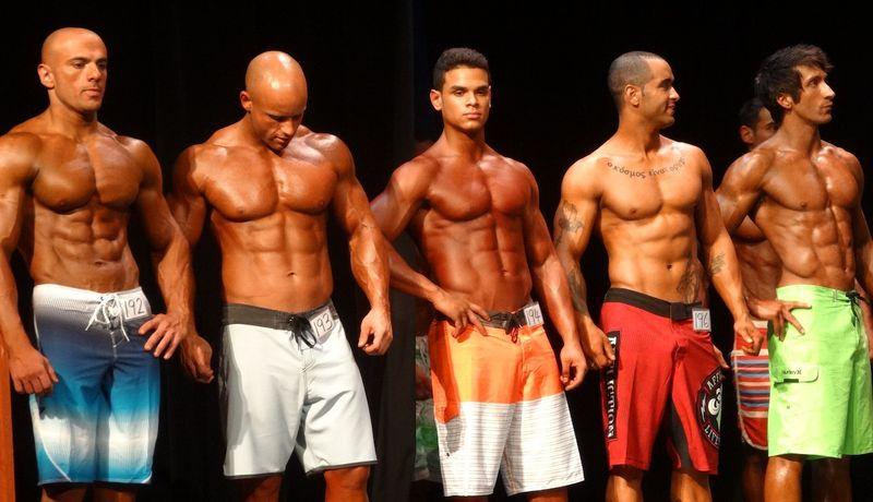 Muscular DSC01371