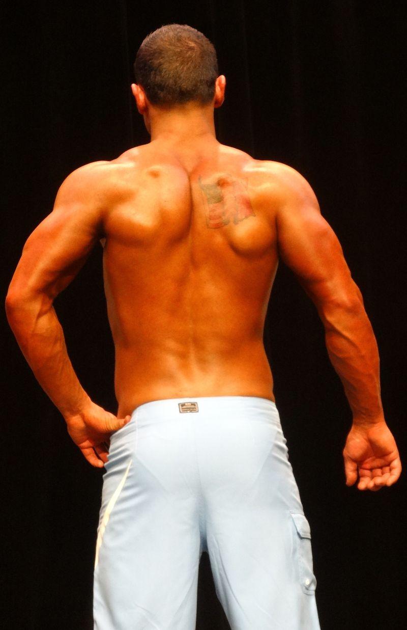 Muscular DSC01469