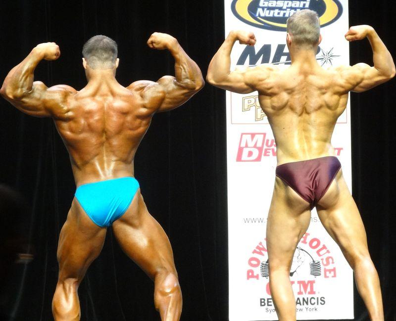 Muscles DSC01869
