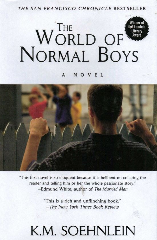 World-of-Normal-Boys-Soehnlein