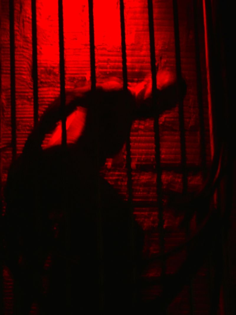 DSC07496-jail-hot-Hustlaball