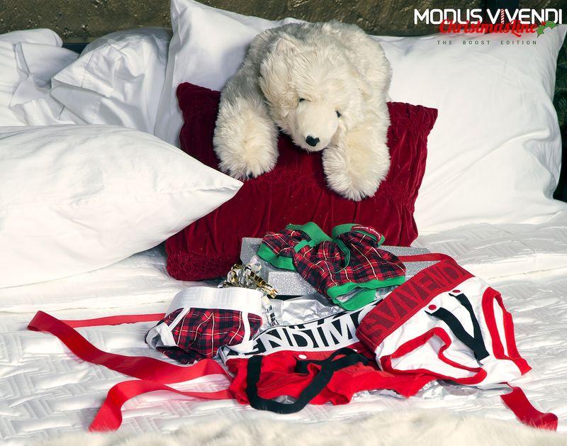 Modus Vivendi - Christmas special line 14