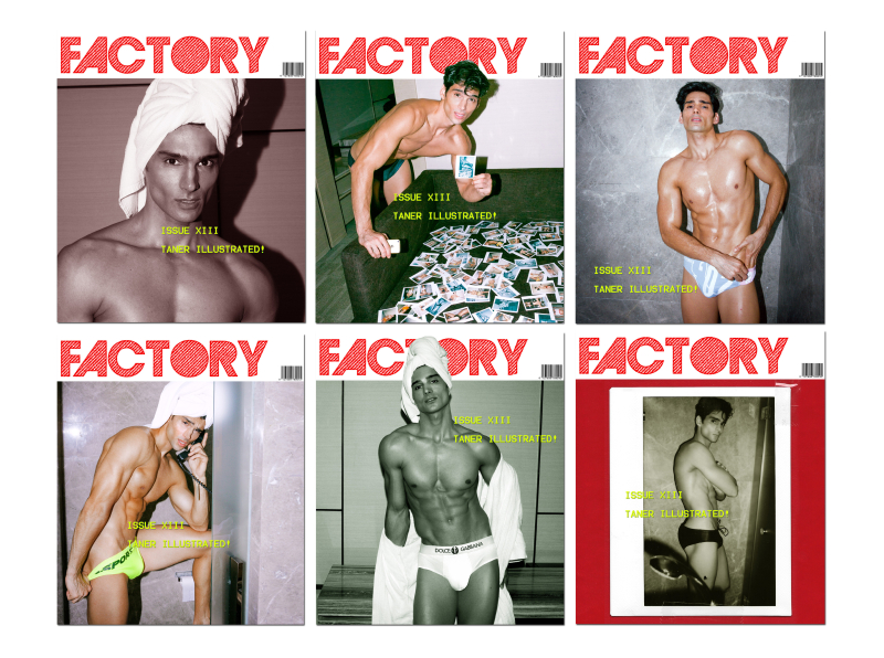 FactoryFANZINE-TanerIllustrated-6Covers