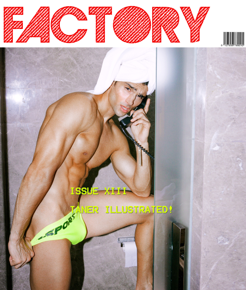 FactoryFANZINE-TanerIllustrated-COVER4