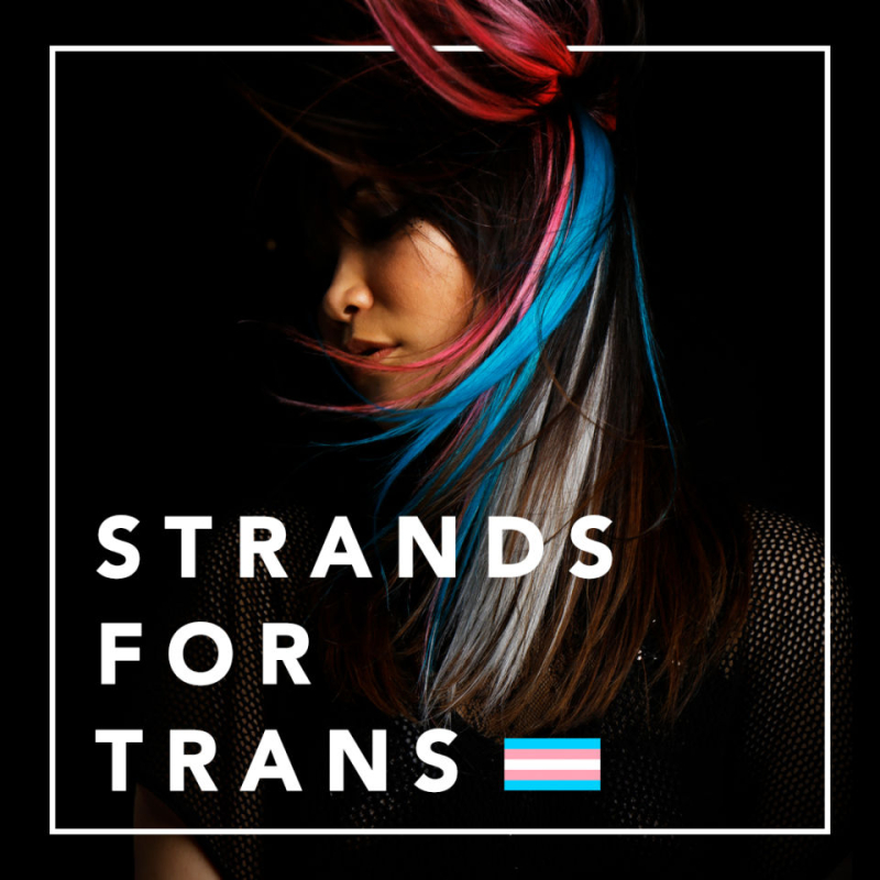 Stand-for-trans