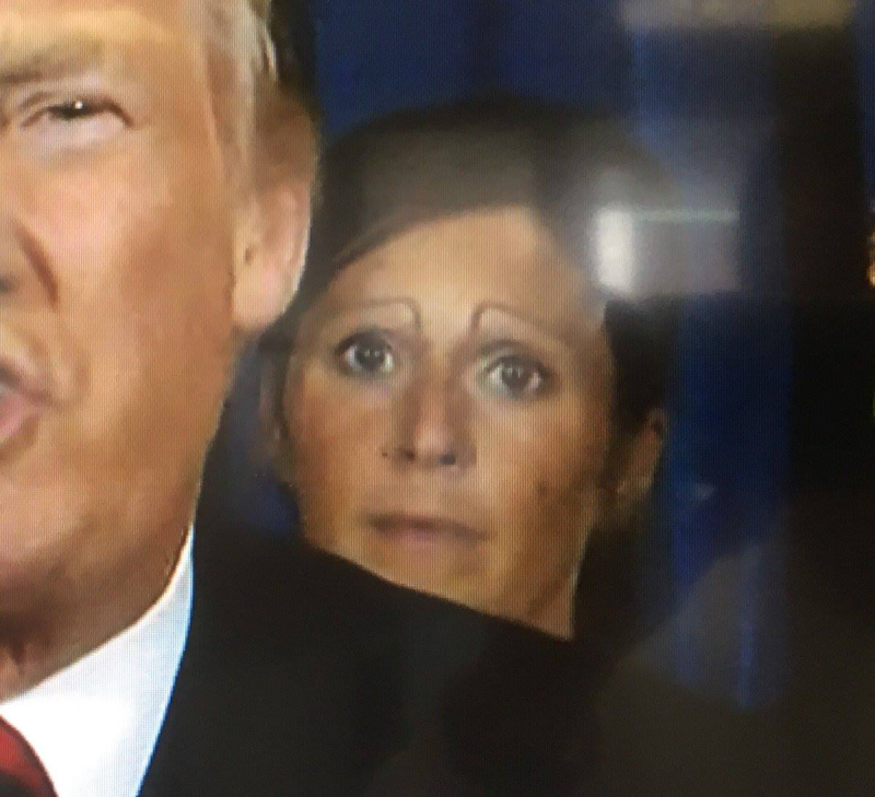 Trumpcare-eyebrows