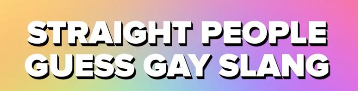 Gay-slang-boyculture