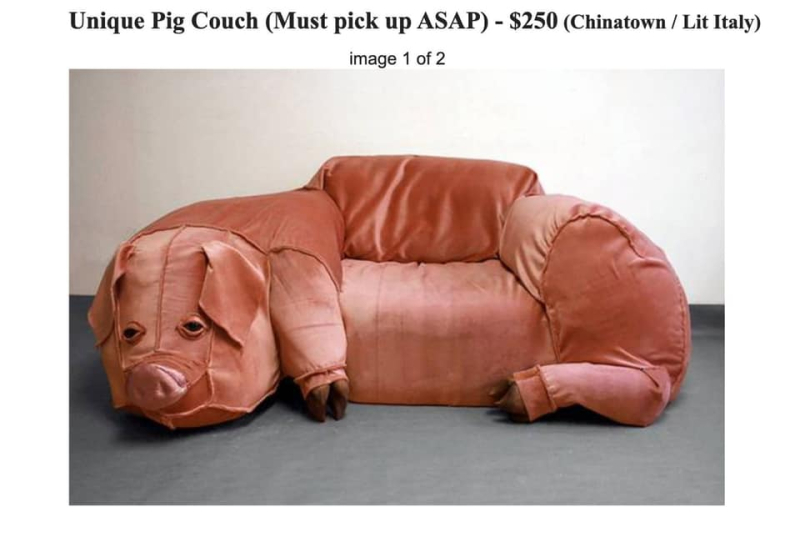 Pig-couch-boyculture