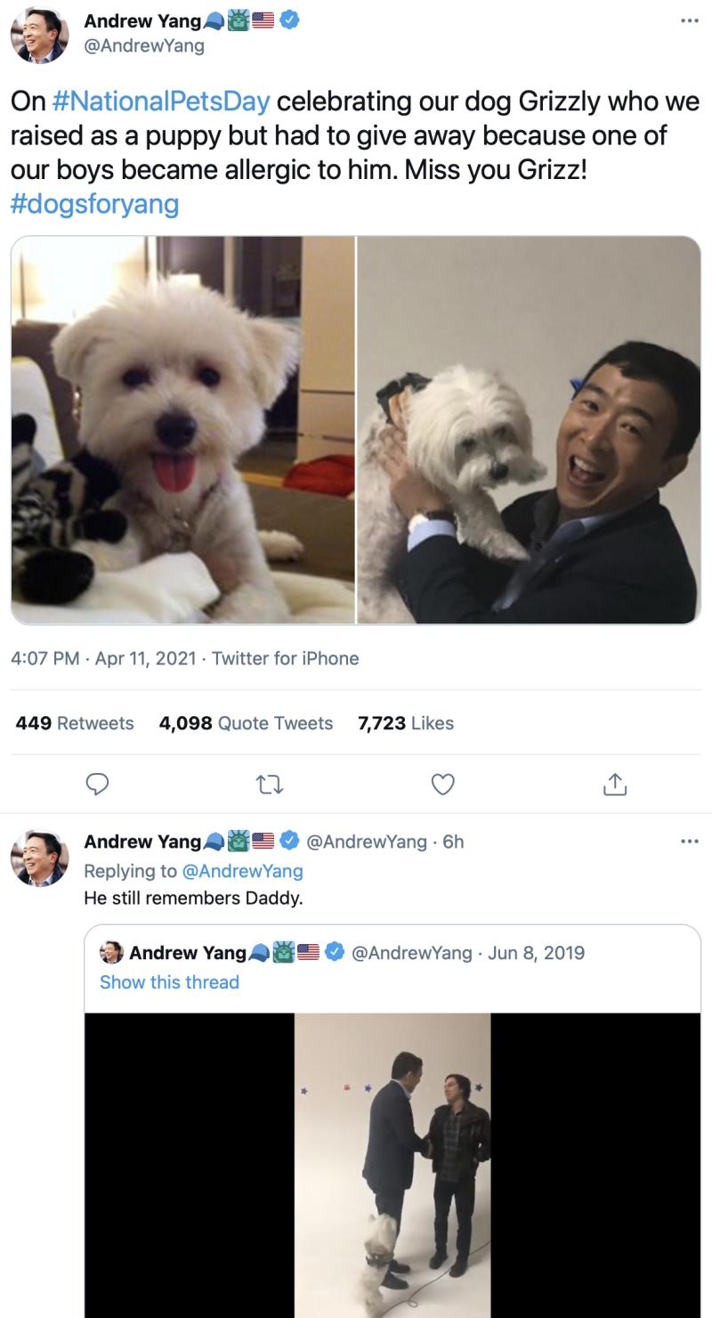 Andrew-yang-dog-boyculture